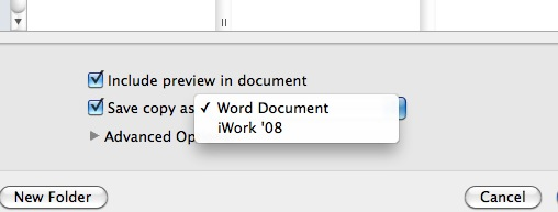 Save As Dialogue Box in Word 2011