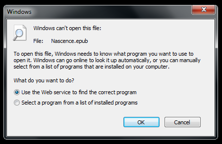 open same application twice windows 8