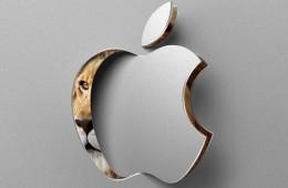 OS X Lion Disc