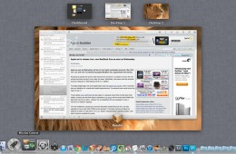 OS X Lion Mission Control Screenshot