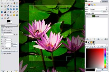 gimp windows user interface